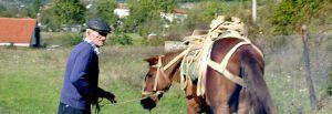 rural-albania