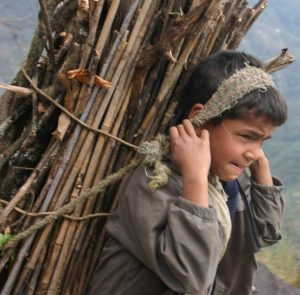 Nepal Boy Working